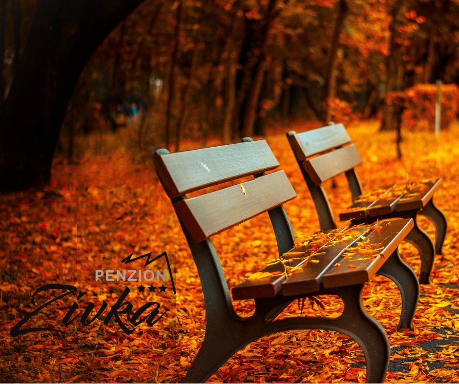 Jesenný pobyt pre seniorov nad 50r.